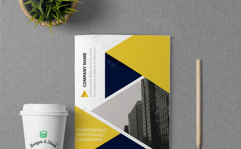 精美个性企业画册设计